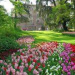 Tante nuove idee per arredare il giardino di casa