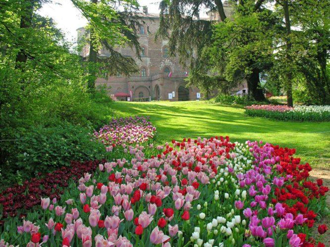 Idee Per Il Giardino Di Casa : Tante nuove idee per arredare il giardino di casa review express