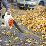 Come scegliere il giusto Soffiatore per foglie
