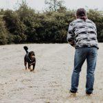 Attrezzatura trekking per il cane: tutto ciò che ti occorre.
